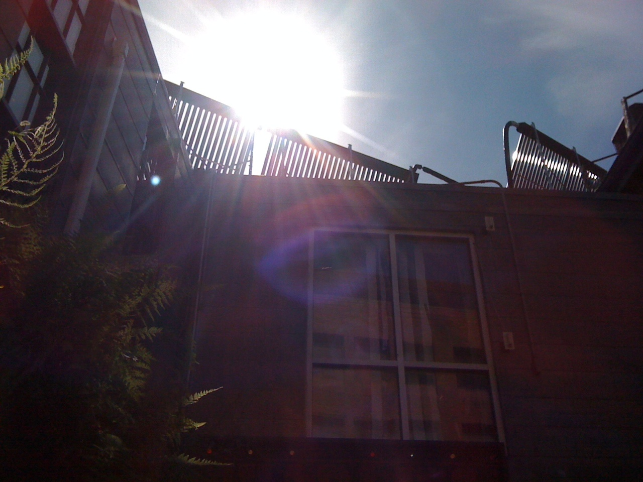 boston-solar-thermal-system